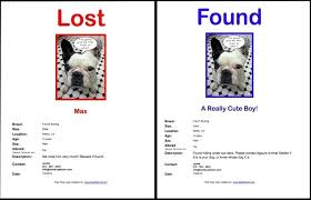 lost and found flyers missing dog flyer template