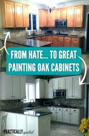 Update Oak Kitchen Cabinets Simple Design Inspiration