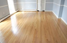 Download Best Way To Clean Laminate Floors Without Streaking Home Neat How  Floor