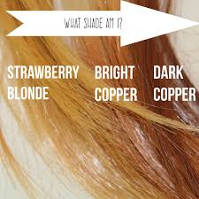 Rootflage Root Touch Up Bright Copper