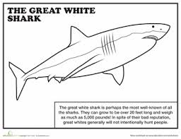 Small Picture Great White Shark Coloring Pages Cecilymae