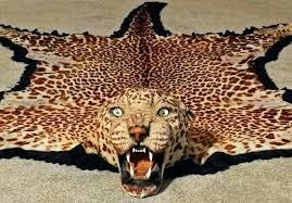 cheetah skin rug leopard cheetah print area rugs area rug leopard print round rug cheetah print
