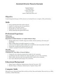 Resume Skills Examples Adorable Experience Bas Cute Resume Examples Skills Sample Resume Template
