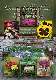 books growing bedding plants in south