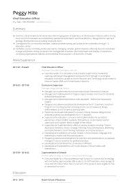 Education Section Of Resume Examples Resume Education Resume Samples And Templates Visualcv