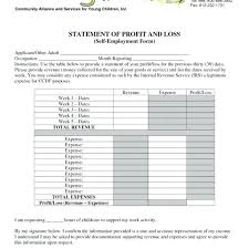 Profit And Loss And Balance Sheet Example Profit And Loss Account Format In Excel Worksheet Image