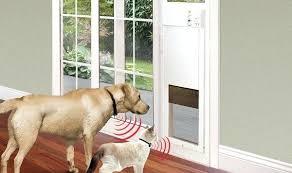 doggy door installation doggy door for sliding glass doors installing cat door installation cost christchurch