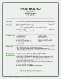 Technical Writer Resume Samples Sample Entry Level Information Technology Resume Entry Level