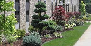 Small Picture Circular Driveway Landscaping Ideas Commercial landscape design