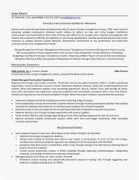Construction Project Manager Resume Sample Picture 16 Best Best
