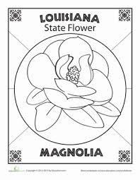 louisiana state flower nature social louisiana state flower worksheet education com on states worksheets