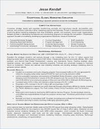 Executive Resume Template 2015 Best of Executive Resume Template 24 Fluentlyme