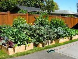 Small Picture diy small vegetable garden plans garden ideas which direction to