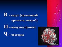 Презентация на тему МОУ ООШ С САВЕЛЬЕВКА КРАСНОПАРТИЗАНСКИЙ  5 В вирус крошечный организм микроб организм микроб И иммунодефицита Ч человека