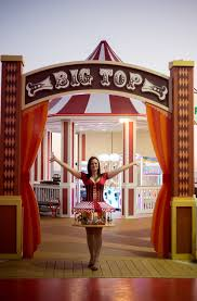 picture of how to make a carousel costume