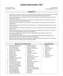 Application Development Manager Resume It Project Manager Resume