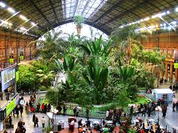 madrid s atocha station doubles as an indoor botanical garden and turtle sanctuary