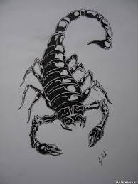 что значит тату скорпион эскизы для девушек мужчин 100 фото