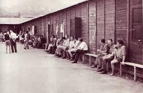 Campo di concentramento di Coltano - Wikipedia