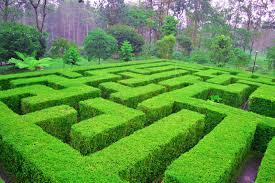 Biaya masuk taman labirin cempaka#spf=1607716768190 : Josephbedford Biaya Masuk Taman Labirin Cempaka Spf 1607716768190 Wisata Taman Labirin Bandung Tiket Masuk Lokasi Balai Kota Fasilitas