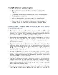 how to write essays example illustration essay samples resume gallery of discursive essay example