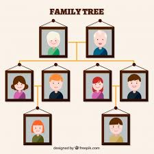 family tree made with decorative frames free vector
