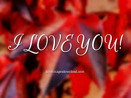 image of i love you so much
