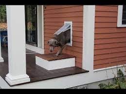 installing a pet door you