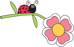 ladybug clipart. pin butterfly clipart ladybug #10