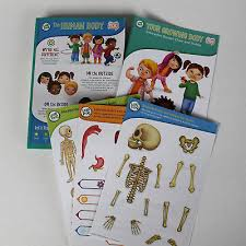 Interactive Growth Chart Leap Frog Tag Book The Human Body Interactive Board Growth Chart Stickers Ebay