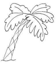 Small Picture Palm Tree Coloring Pages palm tree coloring pages 7 comgif