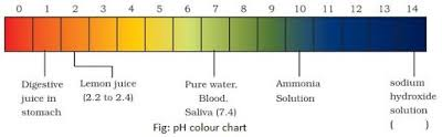 Bicarbonate Indicator Colour Chart To Find The Ph Of The Samples By Using Ph Paper Universal