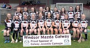 2017 Camogie Roll of Honour - Galway GAA