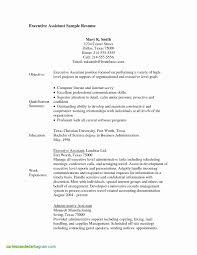 Luxury Medical Assistant Resume Examples No Experience Resume Ideas