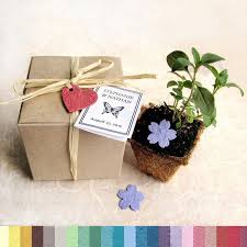 Biodegradable Paper With Flower Seeds 50 Plantable Wedding Favors With Biodegradable Pots And Flower Seed Paper Favor Boxes Herb Seed Planting Kit Baby Shower Favors