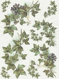 Rice Paper for Decoupage Decopatch Scrapbook Craft Sheet Vintage Ivy | eBay