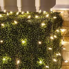 Net Lights For Bushes Set Of 100 Warm White Led Net Lights Christmas Net Lights Outdoor Christmas Decorations Green Wire 4 X 6 Ft M5 Lights Led Warm White