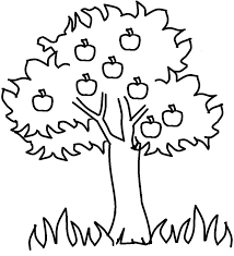 Trees Coloring Page Palm Tree Coloring Sheet Leaf Page Fall Color