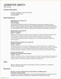 Sample Executive Resume Format Executive Resume Service Professional New Resume Format Free