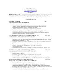 Professional Property Manager Real Estate Agent Resume Property