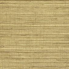 grass at night texture. Interesting Texture With Grass At Night Texture S