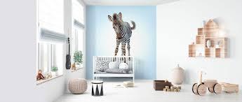 Zebra Foal Gratis Bezorgd Fotobehang Van De Hoogste Kwaliteit