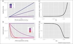 effective population size definition population size and the rate of evolution sciencedirect