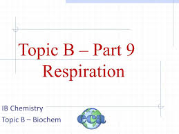 1 topic b part 9 respiration ib chemistry topic b biochem