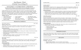 Customer Support Executive Resume 4 Care Samples Nardellidesign Com