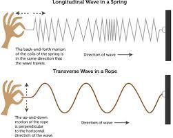 transverse and longitudinal waves venn diagram longitude wave