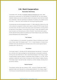executive business plan template useful executive summary business plan format 9 an example of