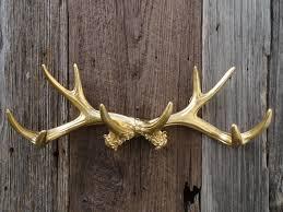 Diy Antler Coat Rack Accessories Delightful Image Of Wooden Stag Head Iron Antler Coat 36