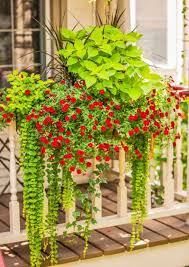 container gardens. 35 Beautiful Container Gardens
