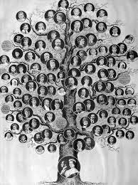 Queen Victorias Family Tree Vita Brevis